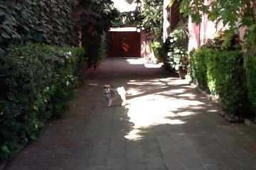 Foto de casa en venta en Lomas Altas, Miguel Hidalgo, Distrito Federal, 2923177,  no 01
