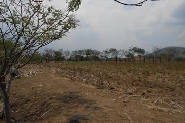 Foto de terreno industrial en venta en  , champusco, huaquechula, puebla, 2552368 No. 01