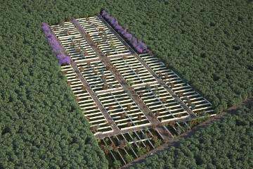 Foto de terreno habitacional en venta en  , chicxulub, chicxulub pueblo, yucatán, 0 No. 10