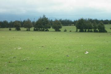 Foto de rancho en venta en  , chignahuapan, chignahuapan, puebla, 2256900 No. 01
