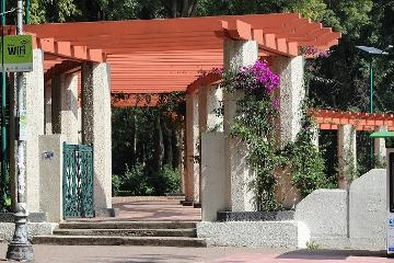Foto de departamento en renta en  , condesa, cuauhtémoc, distrito federal, 2953227 No. 01