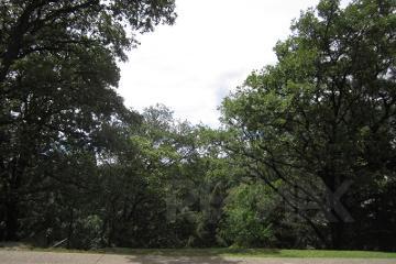 Foto principal de terreno habitacional en venta en cumbres de santa fe, cuajimalpa 2857715.