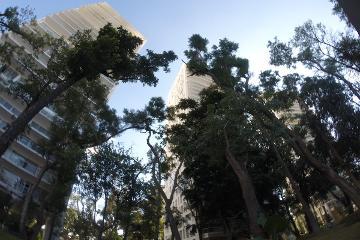 Foto de departamento en renta en  , vallarta san jorge, guadalajara, jalisco, 2992766 No. 01
