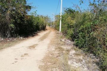 Foto de terreno habitacional en venta en  , dzununcán, mérida, yucatán, 0 No. 01