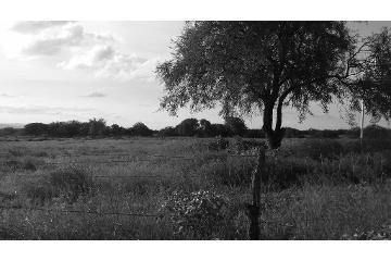 Foto de rancho en venta en  , el carmen, tepezalá, aguascalientes, 2521587 No. 01