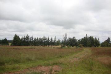Foto de rancho en venta en el chamizal 0, el pino, amealco de bonfil, querétaro, 2537908 No. 07