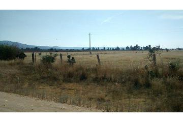 Foto de terreno habitacional en venta en  , el terremoto, el llano, aguascalientes, 2837160 No. 01