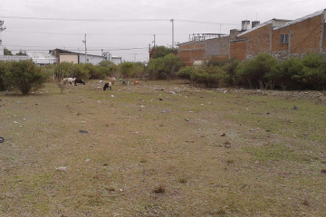 Foto de terreno comercial en renta en  , emiliano zapata, san andrés cholula, puebla, 2600034 No. 01