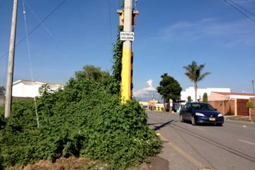 Foto de terreno comercial en renta en  , ex-hacienda la carcaña, san pedro cholula, puebla, 1296231 No. 01