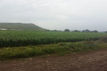 Foto de terreno industrial en venta en Juriquilla, Querétaro, Querétaro, 2814684,  no 01
