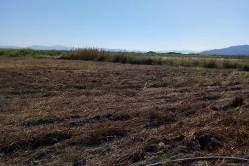 Foto de terreno industrial en venta en La Estanzuela, Teuchitlán, Jalisco, 4302804,  no 01
