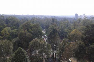 Foto de departamento en renta en Polanco III Sección, Miguel Hidalgo, Distrito Federal, 2946715,  no 01
