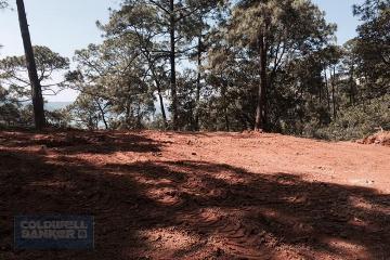 Foto principal de terreno habitacional en venta en fresno, avándaro 2970013.