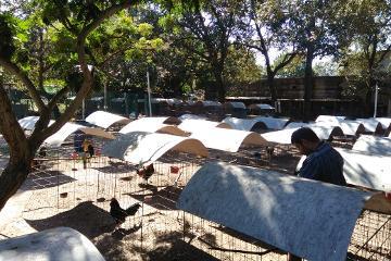 Foto de terreno habitacional en venta en granada 102, jacarandas, ciudad madero, tamaulipas, 4618034 No. 01