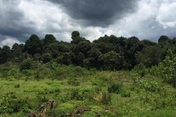 Foto principal de terreno habitacional en venta en km 52 autopista valle de bravo- toluca , valle de bravo 2969997.