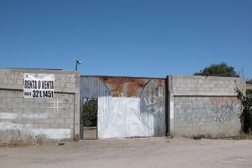 Foto de terreno habitacional en renta en  , la jolla, tijuana, baja california, 2331598 No. 01