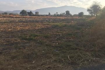 Foto de terreno industrial en venta en  , los cedros, ixtlahuacán de los membrillos, jalisco, 4550025 No. 01