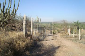 Ranchos En Sonora