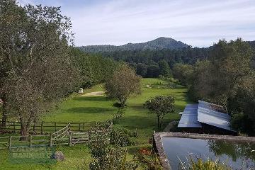 Foto principal de terreno habitacional en venta en los saucos, los saúcos 2969979.