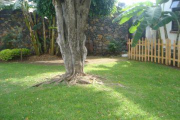 Foto de casa en renta en luna 400, jardines de cuernavaca, cuernavaca, morelos, 1673304 no 01