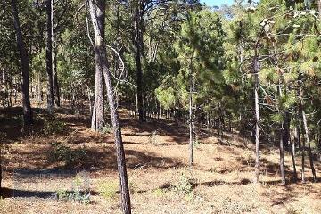 Foto principal de terreno habitacional en venta en monte alto, valle de bravo 2969959.