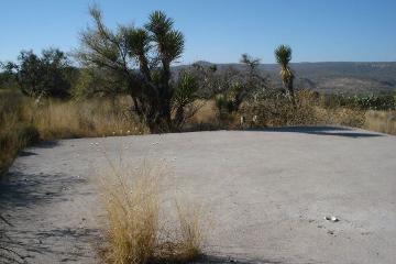 Foto de terreno habitacional en venta en  , estancia de mosqueira, rincón de romos, aguascalientes, 2982873 No. 01