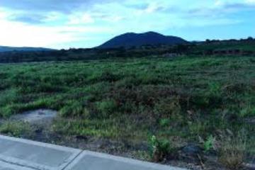 Foto de terreno habitacional en venta en  , nuevo juriquilla, querétaro, querétaro, 2775972 No. 01