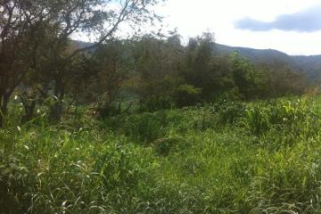 Foto de terreno industrial en venta en numero aplica numero aplica, vista hermosa, tamazula de gordiano, jalisco, 3644382 No. 01