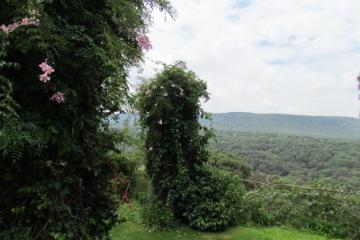 Foto de casa en venta en paseo de las ceibas 141, pinar de la venta, zapopan, jalisco, 2216144 No. 03