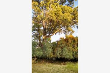 Foto de terreno habitacional en venta en paseo del condor 8, arboledas, querétaro, querétaro, 2750926 No. 01