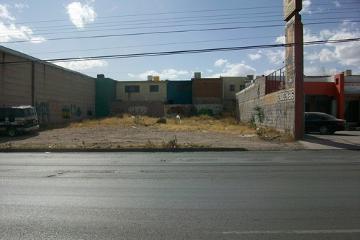 Foto de terreno comercial en renta en  , paseos de chihuahua i y ii, chihuahua, chihuahua, 2593547 No. 01