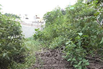 Foto principal de terreno habitacional en venta en popotla 2967065.