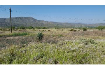 Foto de terreno comercial en venta en  , puebla, saltillo, coahuila de zaragoza, 1283269 No. 01
