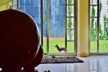 Foto de casa en venta en remanso del mapache , bugambilias, zapopan, jalisco, 2120447 No. 01