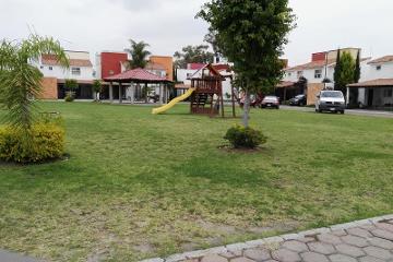 Foto principal de casa en renta en rosas , jardines de san carlos 2754019.
