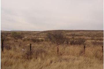 Foto de terreno comercial en venta en  , sacramento i y ii, chihuahua, chihuahua, 1309525 No. 01