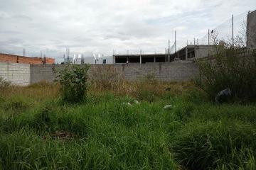 Foto de casa en renta en  , san isidro castillotla sección a, puebla, puebla, 2518623 No. 01