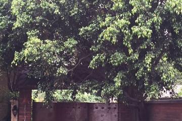 Foto de casa en venta en  , san jerónimo aculco, la magdalena contreras, distrito federal, 2727344 No. 01