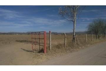 Foto de terreno habitacional en venta en  , san josé, rincón de romos, aguascalientes, 2991863 No. 01