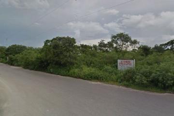 Foto de terreno habitacional en venta en  , san marcos nocoh, mérida, yucatán, 0 No. 02