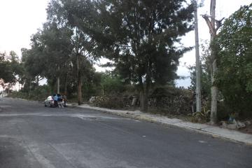 Foto de terreno comercial en venta en  , san miguel teotongo sección guadalupe, iztapalapa, distrito federal, 2837742 No. 01
