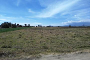 Foto de terreno industrial en venta en  , san miguel xoxtla, san miguel xoxtla, puebla, 1566200 No. 01