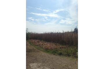 Foto de terreno comercial en venta en  , santa maría moyotzingo, san martín texmelucan, puebla, 2811227 No. 01