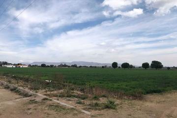 Foto de terreno comercial en venta en santa matilde , san gil, san juan del río, querétaro, 0 No. 01