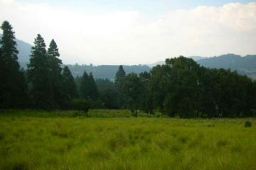 Foto de rancho en venta en santo tomas ajusco 1, santo tomas ajusco, tlalpan, df, 277778 no 01