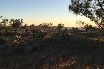 Foto de terreno habitacional en venta en sexta avenida (fundadores) 210, miramar, ciudad madero, tamaulipas, 4378045 No. 01