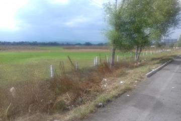Foto de terreno industrial en venta en  sin numero, santa maría moyotzingo, san martín texmelucan, puebla, 2661754 No. 05