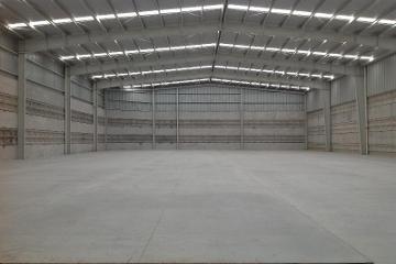Foto principal de nave industrial en renta en s/n, centro 2950305.
