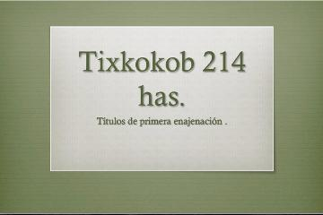 Foto de terreno habitacional en venta en  , tixkokob, tixkokob, yucatán, 0 No. 01