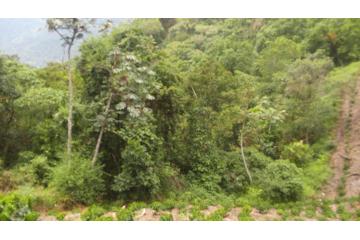 Foto de rancho en venta en  , tlapehuala, xicotepec, puebla, 2623130 No. 01